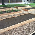 Haltom City Community Garden-https://www.russellfeedandsupply.com