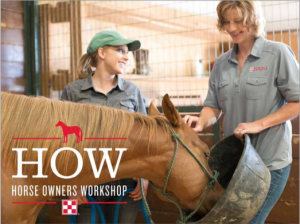 Horse Owners Workshop at Russell Feed and Supply Camp Bowie West in Fort Worth, Texas.