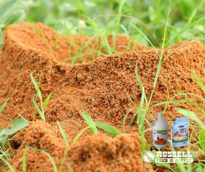 Controlling Fire Ants