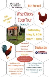 Wise chicks coop tour